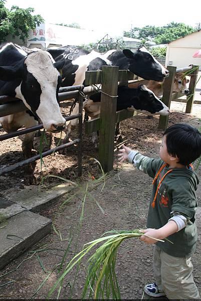 2010_0501_105533埔心農場.JPG