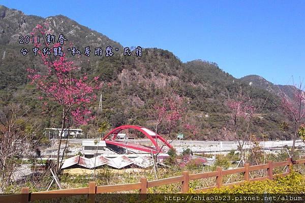 松鶴_2011_0205_123920_005.jpg