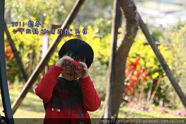 松鶴_2011_0205_152558_008.jpg