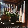 松鶴_2011_0206_090854_064.jpg