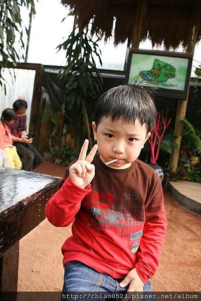 2011_0228_134408.JPG
