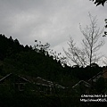 山上人家2011_0430_013.jpg