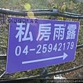 松鶴_2011_0205_170534_028.jpg