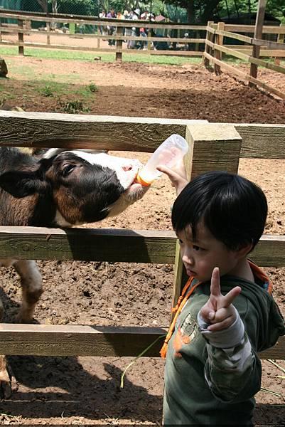 2010_0501_110352埔心農場.JPG
