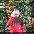 松鶴_2011_0205_170353.jpg