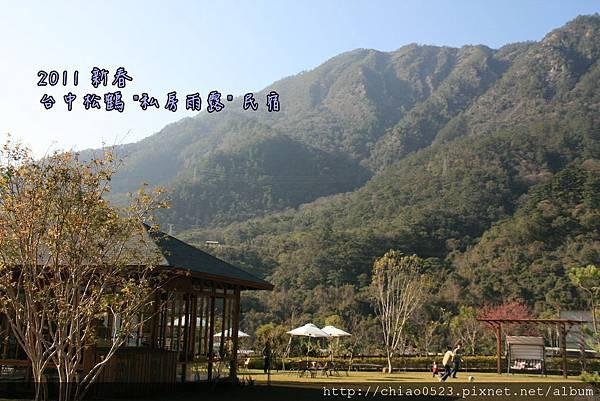 松鶴_2011_0205_153216_009.jpg