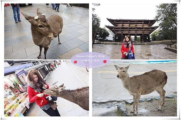 關西京阪神12.jpg