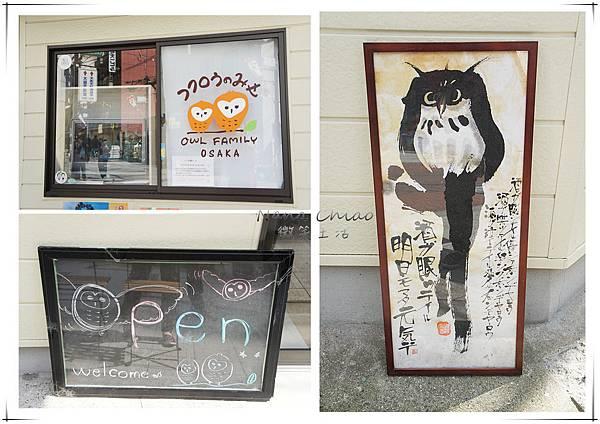 QSAKA OWL FAMILY04.jpg