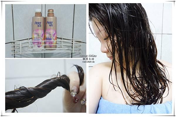 飛柔精油香氛洗髮經+潤髮乳09.jpg