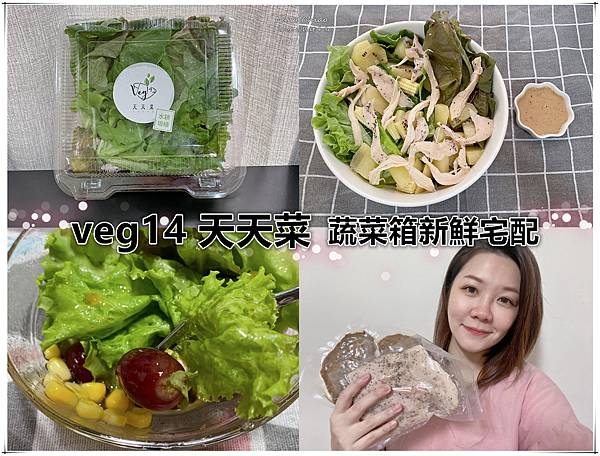 veg14天天菜-蔬菜箱新鮮宅配.jpg