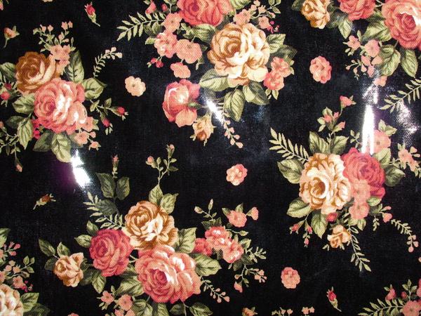 61-黑玫瑰.JPG