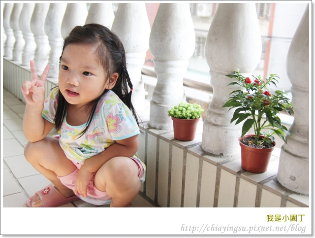 我是小園丁20110908-142109.JPG