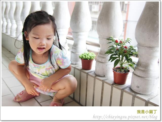 我是小園丁20110908-142105.JPG