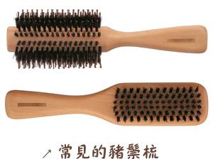 豬鬃梳(關於梳子二三事:梳子的種類與說明)