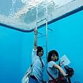 金澤21世紀美術館 (13).jpg