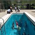 金澤21世紀美術館-Swimming Pool  103.jpg