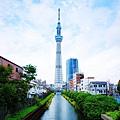 TOKYO SKY TREE (1).jpg