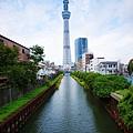 TOKYO SKY TREE (2).jpg