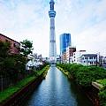 TOKYO SKY TREE (3).jpg