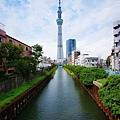 TOKYO SKY TREE (7).jpg