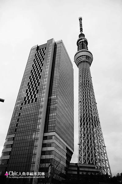 TOKYO SKY TREE (14).jpg