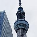 TOKYO SKY TREE (21).jpg