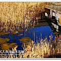 小豆島金氏世界紀錄最窄海峽-土澈海峽 (14)
