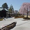 京都-高台寺花見 (25)