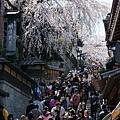 京都-二年板 (29)