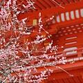 京都-清水寺清水板 (1)