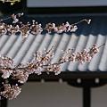 京都-清水寺清水板 (3)