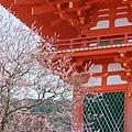京都-清水寺清水板 (6)