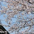 京都-清水寺清水板 (10)