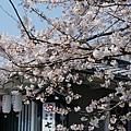 京都-清水寺清水板 (9)