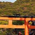 京都八板神社 (24)