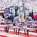京都圓山公園-夜櫻宴 (27)