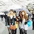 上野公園-櫻花雨 (6)