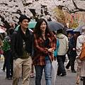 上野公園-櫻花雨 (39)