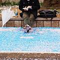 上野公園-櫻花雨 (41)