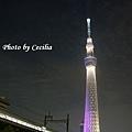 TOKYO SKY TREE 夜  (1)