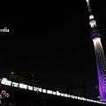 TOKYO SKY TREE 夜  (3)
