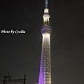 TOKYO SKY TREE 夜  (4)