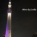 TOKYO SKY TREE 夜  (5)