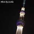 TOKYO SKY TREE 夜  (7)