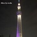 TOKYO SKY TREE 夜  (8)