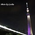 TOKYO SKY TREE 夜  (11)