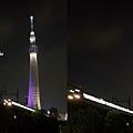 TOKYO SKY TREE 夜  (14)