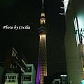 TOKYO SKY TREE 夜  (15)