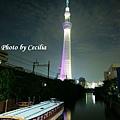 TOKYO SKY TREE 夜  (16)