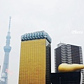 Tokyo Sky Tree吾妻橋端拍 (8)